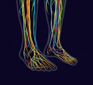 Electrodiagnosis (EMG/NCS)